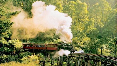 Steam engine on bridge in Yarra Valley in Australia.