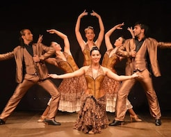 Fast Track:Flamenco Show Ticket at the Palacio del Flamenco