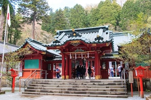 Mishima & Hakone: 1 day Private Tour with Driver