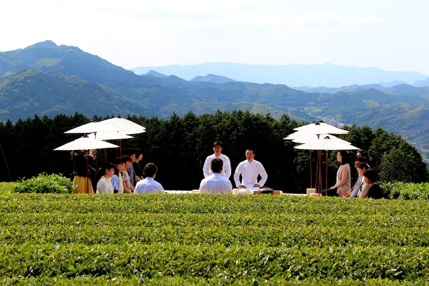 Show item 1 of 4. Tea Tourism : Outdoor tea ceremony experience @ Tenchadai