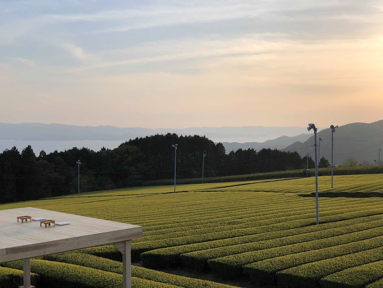 Show item 1 of 3. Tea Tourism : Outdoor tea ceremony experience @ Chatou