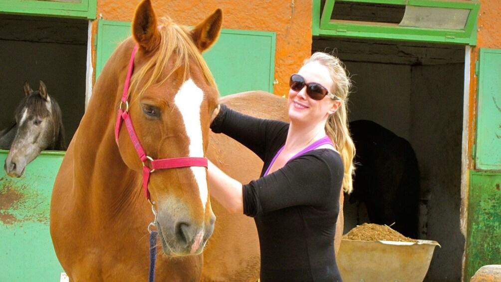 Foto 4 von 10 laden woman brushing horse in Barcelona