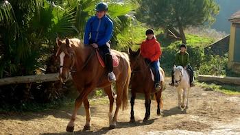 Paardrijavontuur in Collserola Park
