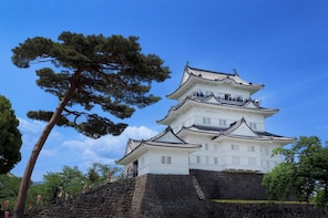 Odawara & Hakone: 1 day Private Tour with Driver