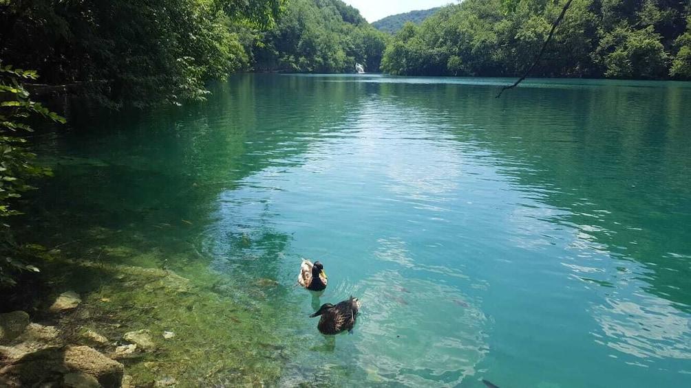 Show item 2 of 8. Private transfer from Split or Trogir to Zagreb & Plitvice