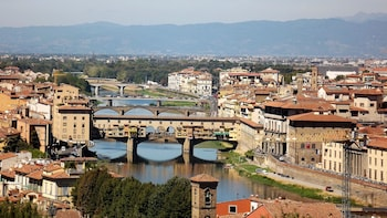 Shore Excursion: Florence & Pisa On Your Own From Livorno