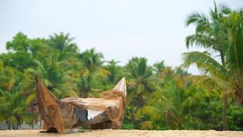 Kerala Beaches with Wildlife Tour