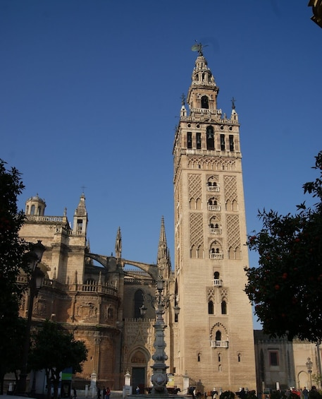 Show item 4 of 9. Day trip: Seville from Cadiz