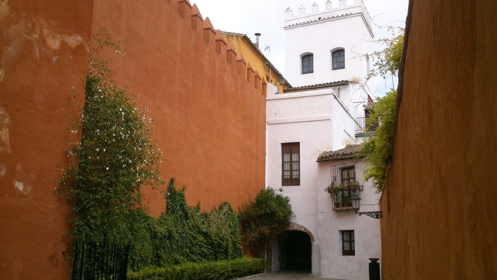 Show item 3 of 9. Day trip: Seville from Cadiz