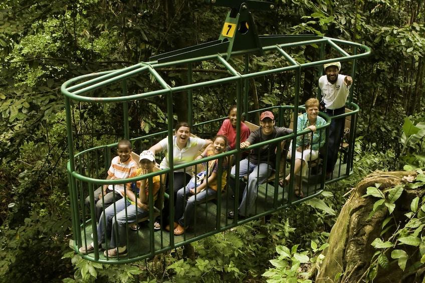Charger l'élément 5 sur 9. Rainforest Aerial Tram