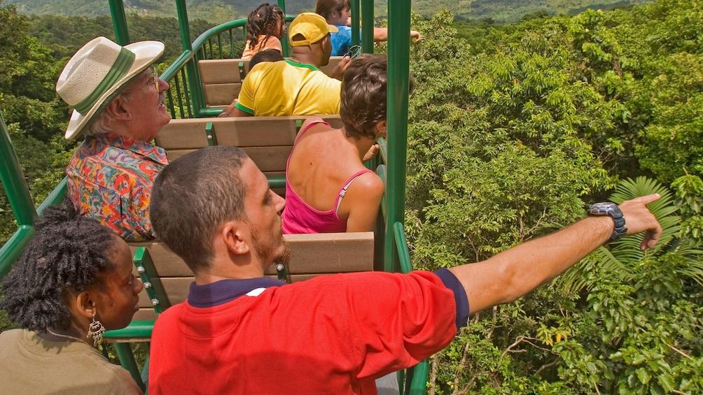 Charger l'élément 1 sur 9. Aerial tram in the rainforest at Saint Lucia