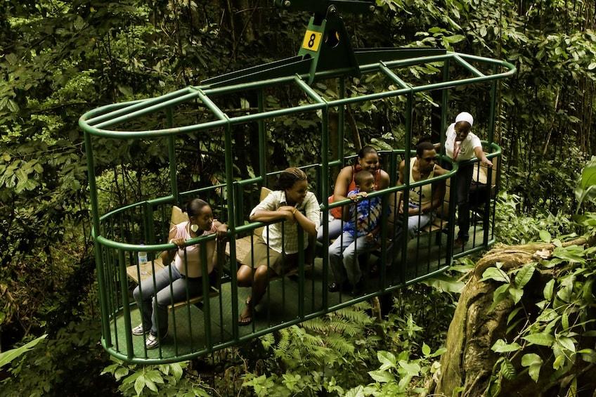 Rainforest Aerial Tram