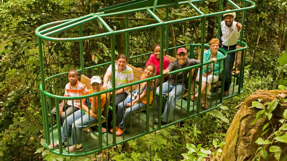 Charger l'élément 2 sur 9. Enjoying the aerial tram in the rainforest at Saint Lucia