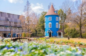 Kawagoe & Moomin Valley Park: 1 day Private Tour with Driver