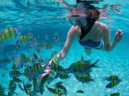 Land's End & Snorkeling Tour