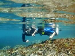 SNORKEL EXPERIENCE WITH OCEANOGRAPHERS IN L'AMETLLA DE MAR