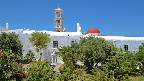 Gardens and whitewashed buildings in Mykonos