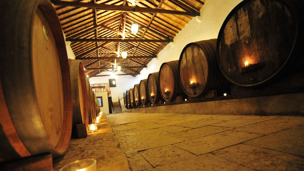 Show item 1 of 5. Row of wine barrels at a winery in Portugal