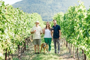 Lake Country Wine Tour - 5 Hrs FROM VERNON