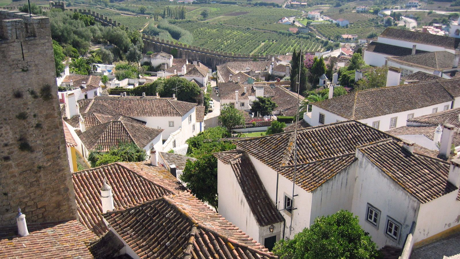 Rooftops of the city of Obidos