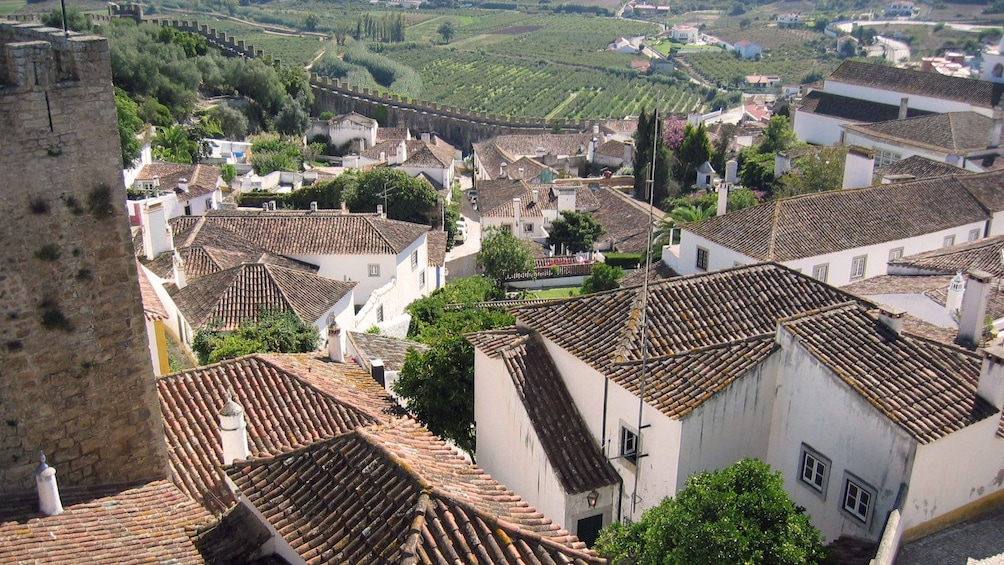 Show item 5 of 5. Rooftops of the city of Obidos