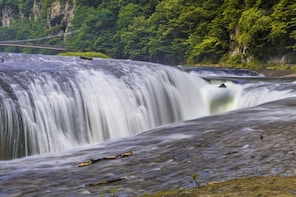 Gunma: Lavender Park & Waterfall 1 day Private Tour