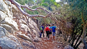 Adventure Trekking in the Mountains Half-Day Experience