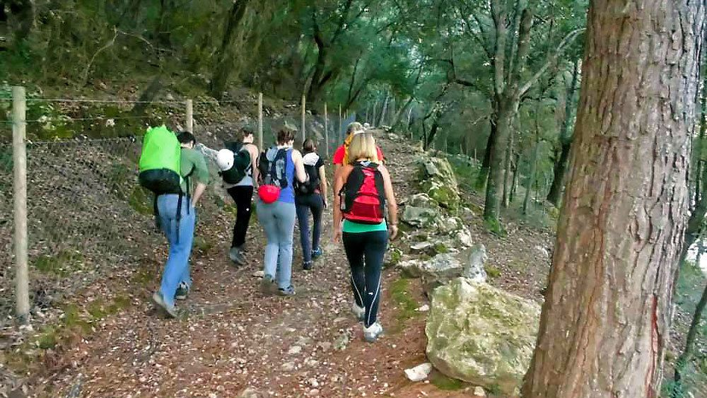 Hikers trailing a wooded dirt path in Mallorca