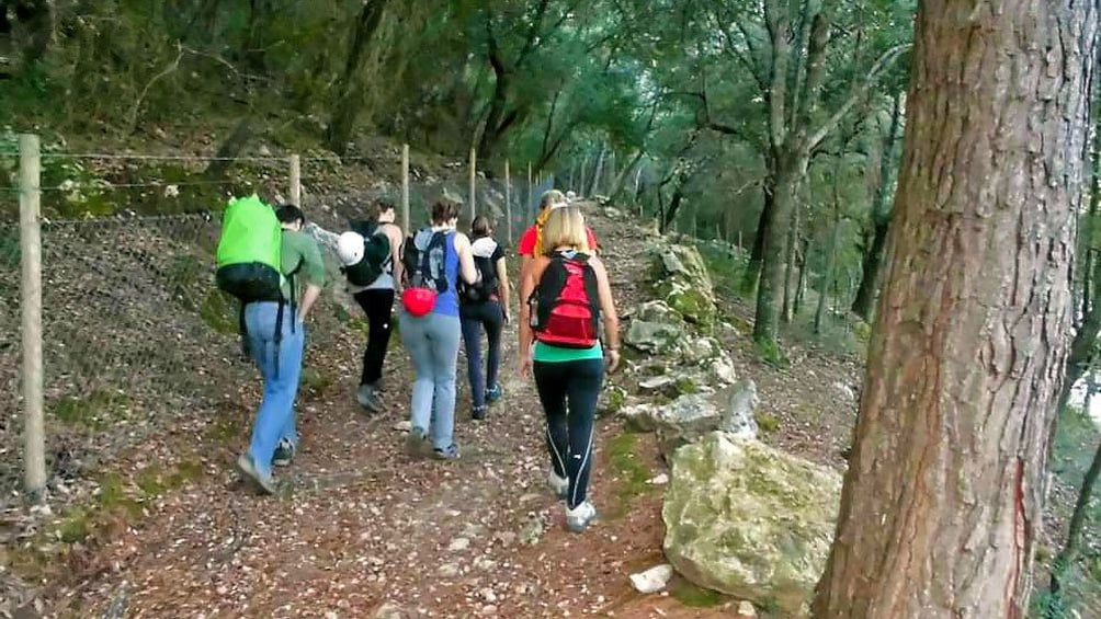 Foto 2 von 5 laden Hikers trailing a wooded dirt path in Mallorca
