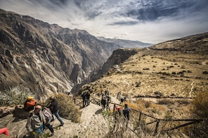 2-Day Colca From Puno To Arequipa