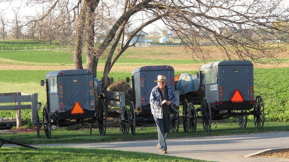 Show item 3 of 5. Man walking near parked carriages in front of a field in Amish Country, Lancaster