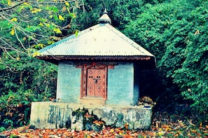 Discover the Spiritual Trails of Manali(2 Hours Guided Walk)