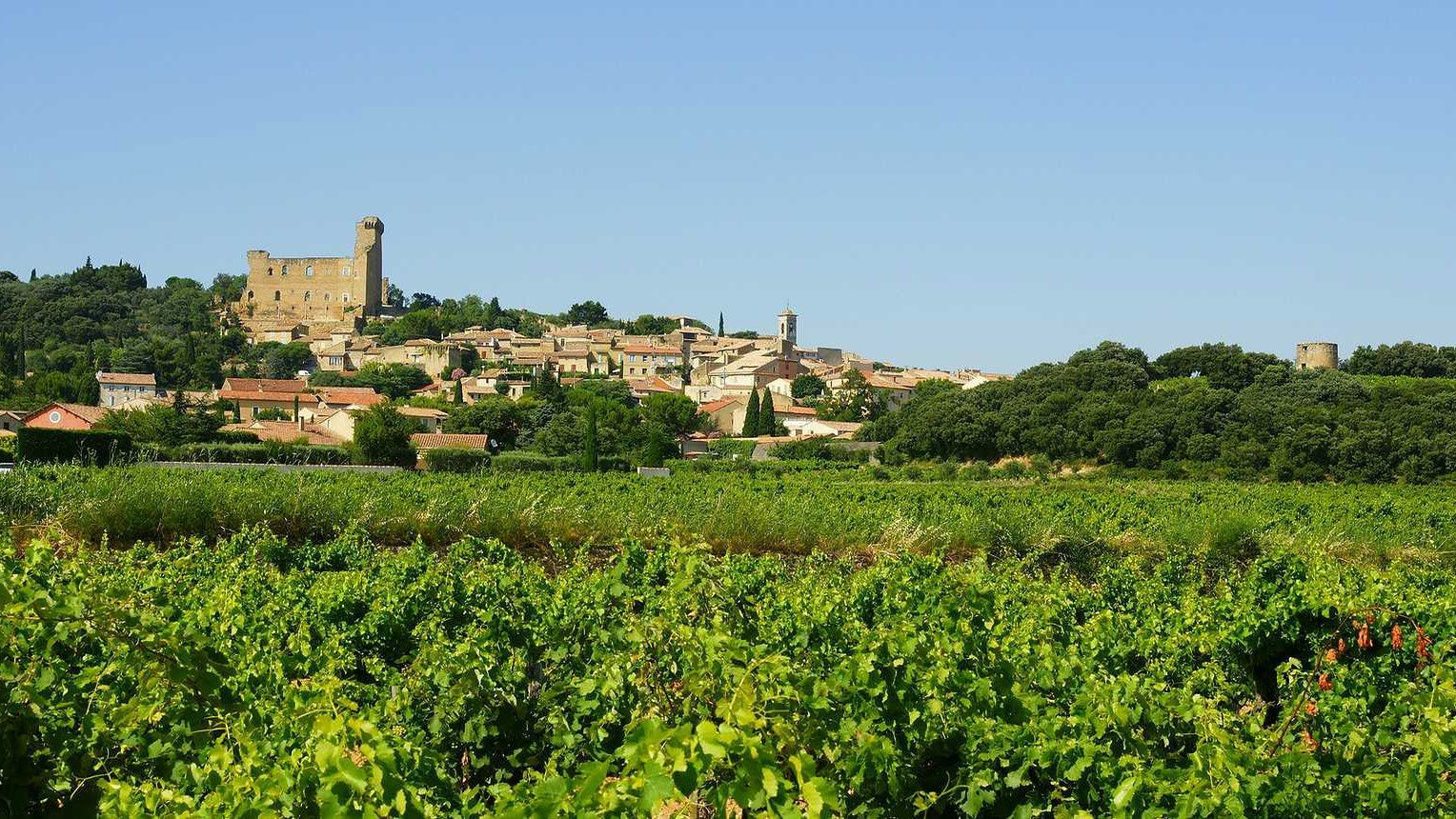 vineyard outside the town of chateauneuf du pape, Marseille