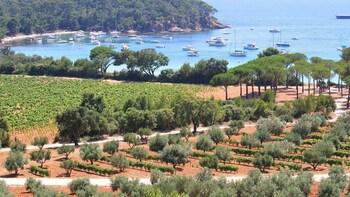 Excursion vinicole Côtes-de-Provence - 8 heures