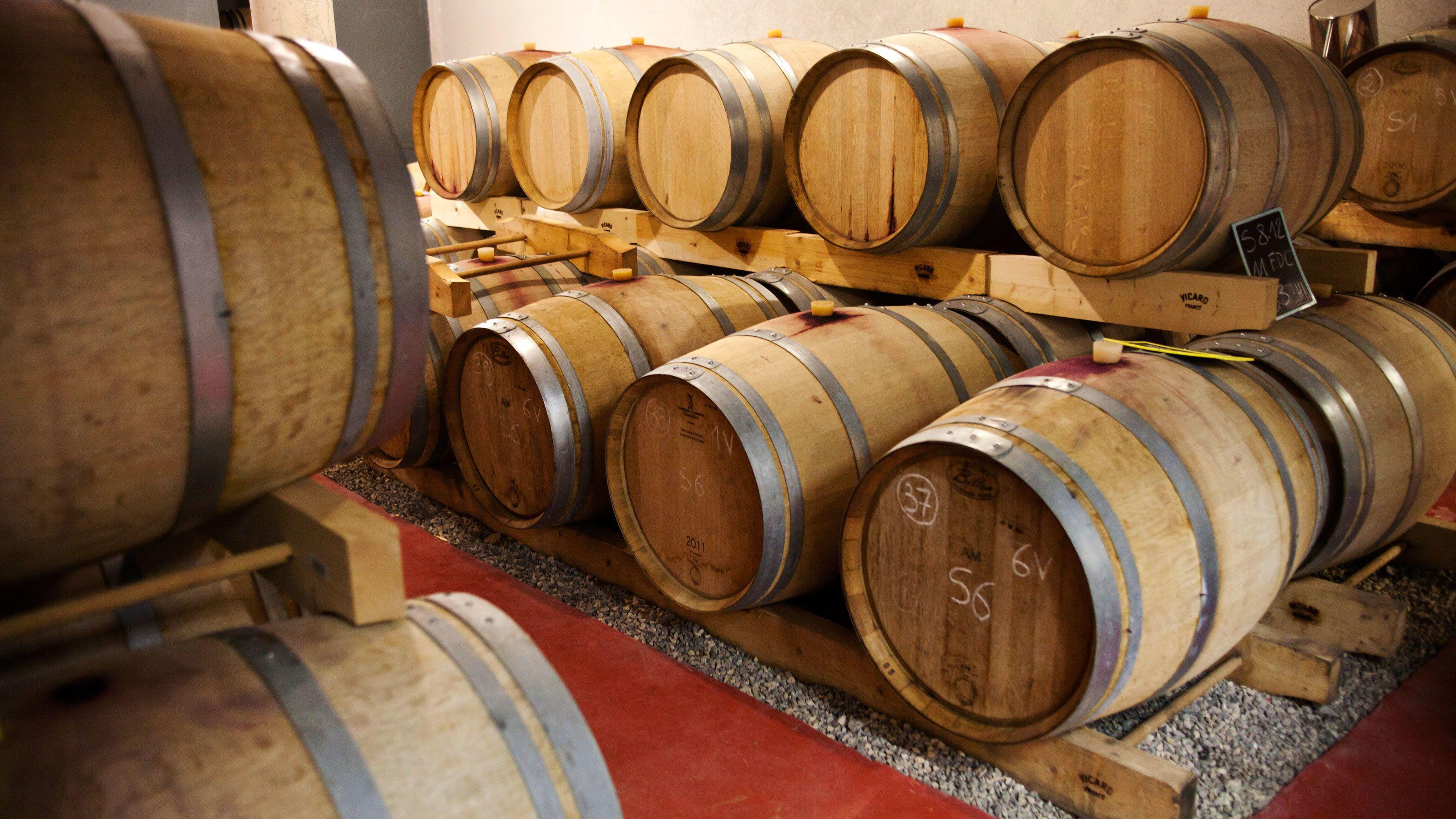 wine barrels in cellar at Coteaux d'Aix Marseille