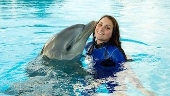 Indlæs billede 2 af 10. Dolphin kissing a woman's cheek at Marine Park in Malta