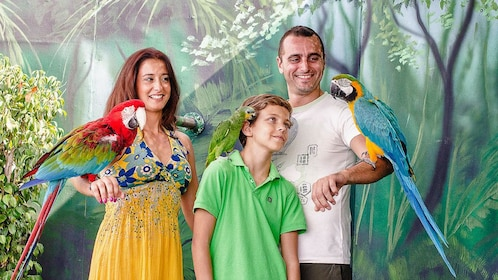 Family with parrots on their arms at Marine Park in Malta