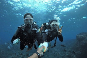 Blue cave experience diving! 【Okinawa Prefecture】 Feeding & photo images fr...