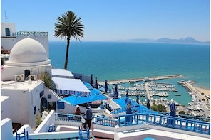 Excursion of 1 day Tunis, Sidi Bousaid, Carthage and Hammamet departure of ...