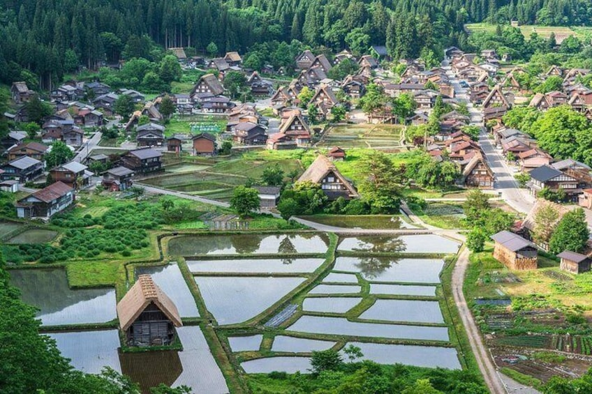 Shirakawa GO and Satoyama culture