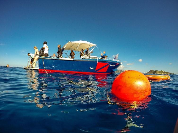 Show item 3 of 10. Discover Scuba Diving