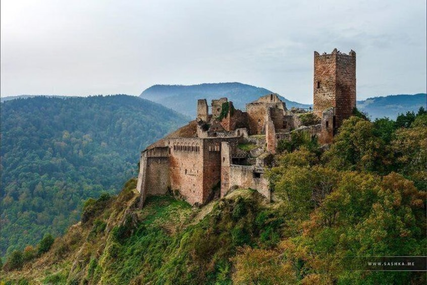 Show item 1 of 16. Day trip from Baden-Baden to Alsace: Colmar, Riquewihr, Alsace Wine Route