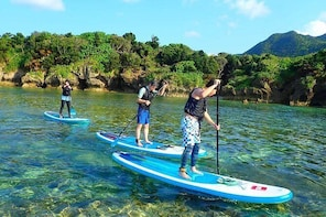 Stand Up Paddling and Canoe Tour at Kabira Bay in Ishigaki