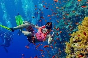 Zanzibar Snorkelling with Lunch