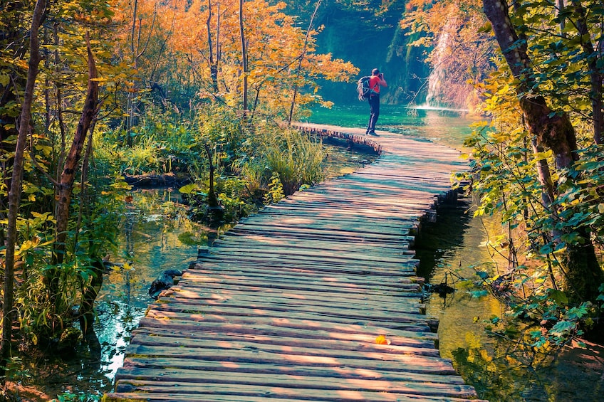 Plitvice Lakes Full-Day Guided Tour from Split by Gray Line