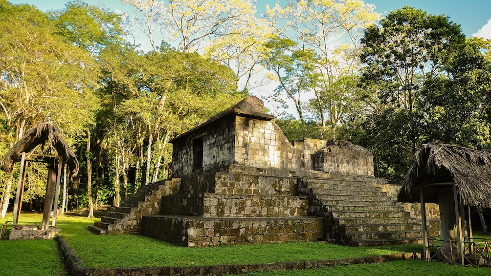 Ruins of a temple surrounded by trees in Ceibal