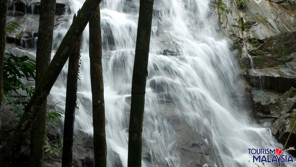 Show item 2 of 5. Cascading waterfall at Templer's Park in Malaysia