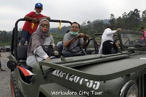Merapi trip