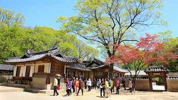 Changdeokgung Palace, Secret Garden & National Museum Tour