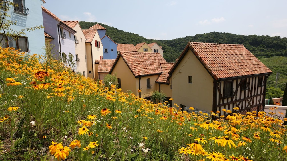 Show item 3 of 5. Bright orange flowers and buildings of Petite France